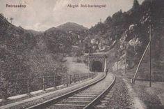Railroad Tracks, Train, Strollers, Trains
