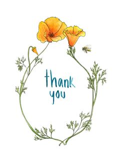 Hnadmade California Poppy 5x7'' Thank You Cards- Greeting Card- Hand Drawn-Hand Lettered by MarenAnneArt on etsy