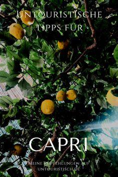 Wunderschöne Insel ist Capri allemal, aber wie entkommt man bloß diesen nervigen Touristenmassen? Hier komen meine Tipps! #capri #italien #italienreise Cinque Terre, Reisen In Europa, German, Hotels, Inspiration, Movie Posters, Movies, Travel, Outdoor