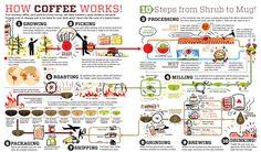 Bagi para pecinta kopi, berikut kami bagikan gambar infograph tentang kopi yang mungkin bisa di pajang dikedai atau kamar kalian. Memang sih belum banyak, dan bagi temen – temen kalau mempuny…