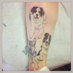 I just got the top tattoo of my dog Twix.  The dog on the lower right is my dog Bandit and the bottom left is my dog Isabelle.  They are all still alive and well, but I just wanted a way to always remember them.  They will forever be in my heart and on my leg.  :)