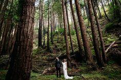 Kaitlyn And Matt's Enchanted Forest Wedding Small Intimate Wedding, Intimate Weddings, Small Weddings, Enchanted Forest Wedding, Woodland Wedding, Big Sur California, California Wedding, Lady In My Life, Wedding Videos