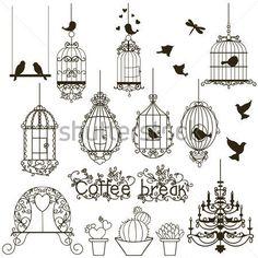 11 Meilleures Images Du Tableau Oiseaux Searching Baroque Et Bird