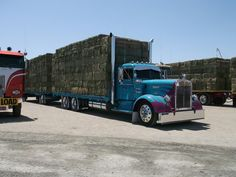 Kenworth classic needle nose loaded with hay