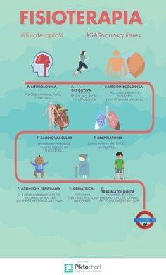 Que campos abarca la fisioterapia?
