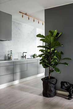 10 Cheap And Easy Cool Tips: Modern Minimalist Bedroom Decor minimalist kitchen white black cabinets.Modern Minimalist Kitchen Herringbone Floors minimalist home architecture stairs. Grey Kitchens, Home Kitchens, Küchen Design, House Design, Design Ideas, Wood Design, Modern Design, Design Inspiration, Kitchen Wall Colors