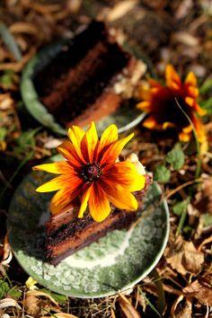 MangoPapaja: Czekoladowy tort z chrupiącą praliną