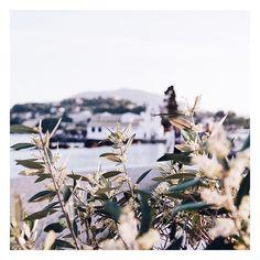 Ja chce lato i takie widoczki  ______ #travel #traveller #travelling #travelgram #travelslifee #traveler #travelingourplanet #travelphotography #travels #instatraveling #instagreek #instagreece_sea  #wonderful_places #beachesnresorts #travelawesome  #TLPicks #bookingloves #wu_greece #corfu #Korfu #corfuisland #greece #greekislands #lovegreece #beautifulgreece