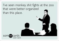 Monkey Shit Fights