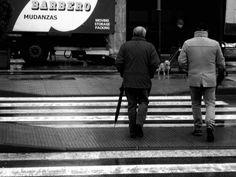 #zebracrossing #whitestripes #stripes #crossing #street #photo #streetphotography #blackandwhitephotography #monochrome  #blackandwhitephotographylovers  #blackandwhitephoto #blackandwhite#bnw_society #bnw #bw_lover  #bw_photography #sonycybershotdsc2000 #sonycamera #cybershot #dog