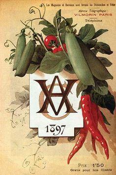 'Vintage Vegetable Seed Catalog Paris Art Print by mindydidit Garden Catalogs, Seed Catalogs, Vintage Gardening, Organic Gardening, Seed Art, Pub Vintage, Etiquette Vintage, Paris Poster, Garden Labels