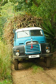 Truck overloaded with sugar cane in southern Mauritius by misima-mada