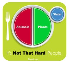 paleo/primal/etc whole food portion sizes... it's a LITTLE more involved than this picture ;) but not much.... helpful guide
