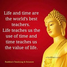 Gujarati Quotes status by Mukesh Shah on Buddha Quotes Life, Buddha Quotes Inspirational, Buddhist Quotes, Inspiring Quotes About Life, Spiritual Quotes, Buddhist Teachings, Study Quotes, Lesson Quotes, Faith Quotes