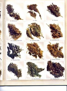 The #cannabis our parents smoked. From 1977 High Times magazine. #cannabis #seeds  ( marijuana cananbis ) http://www.pinterest.com/thathighguy