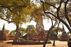 The ruins of Wat Phra Ram in Ayutthaya, Thailand. For more information on visiting Ayutthaya view our guide!  Wat Phra Ram Ruins Ayutthaya Thailand Travel Buddhist Temple World Heritage Site Tourist Attraction Southeast Asia Ayutthaya Historical Park Kingdom of Siam