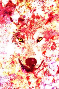 Wolf Art Print, a different color would be better