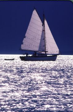 "catchingeverywave: "" Atkin designed Tern sails into Naniamo BC. (Built Hadlock Boatworks, 1981) by Eric. """