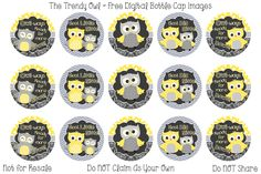Big Sister/Little Sister Owls, Yellow and Grey ~ FREE Digital Bottle Cap Images!! https://www.facebook.com/thetrendyowlUS http://www.thetrendyowl.com