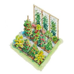 All-American Vegetable Garden Plan from Better Homes & Gardens.