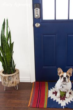 I want a blue door!