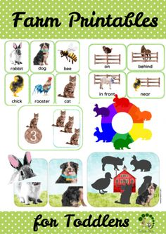 Farm Printable Pack for Toddlers - Activities for fine motor skills, counting, new vocabulary, problem-solving and learning new colours. Montessori Nature Blog