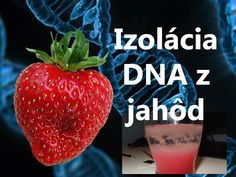 Izolácia DNA z jahôd - YouTube