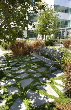"The desire for sustainability and the focus on landscaped ""rooms"" created unique opportunities to provide a corporate client with spaces more reminiscent of a private garden. Here, broken concrete from the tilt-up building's casting slabs were recycled as decorative paving, while also contributing to the projects LEED® Gold certificate (photo: Cris Costea)."