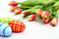easter eggs and tulips - Ostereier und Tulpen