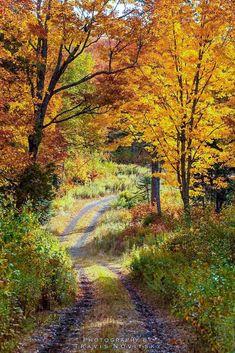 40f3190507e Country lane (Minnesota) by Travis Novitsky  unable to find a link  cr