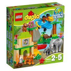 10804-La jungle