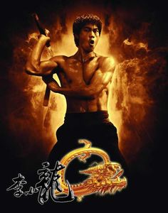 The Legend of Bruce Lee (Chinese) 11x17 Movie Poster (2008)