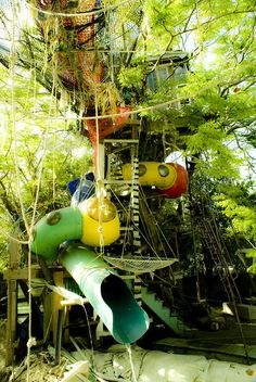 Treehouse with water slide