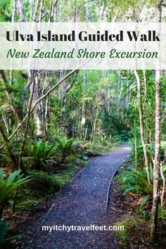 An Ulva Island Guided Walk offers a glimpse of nature at the tip of New Zealand. Active boomer travelers will enjoy this shore excursion if their ship travels to Stewart Island off New Zealand's South Island. Cruise Excursions, Cruise Destinations, Shore Excursions, Cruise Travel, Cruise Tips, New Zealand Cruises, New Zealand Itinerary, New Zealand Travel, Moana