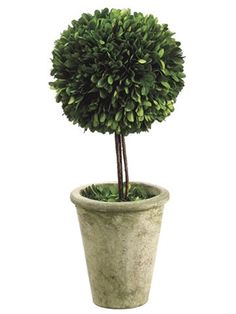 moss ball topiary centerpieces - less pot, more stalk