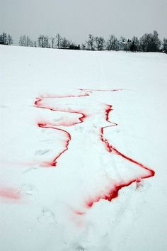 Blood In Snow Tumblr Sally northmore, front end developer: blood on snow from http