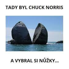 Funny Memes, Jokes, Chuck Norris, Warrior Cats, Celebrity, Marvel, Humor, Animals, Animales