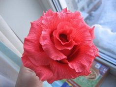 DIY: Crepe paper flowers with step by step excellent picture instructions