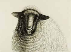 Henry Moore Sheep Sketches: Solid in form, sudden and vigorous in movement, Henry Moore's sheep are created through a network of swirling and zigzagging lines in the rapid and (in Moore's hands) sensitive medium of ballpoint pen. Created in 1972, Henry Moore's representations of sheep are among the most popular of his works, surprising and delighting those discovering them for the first time.