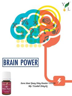 Brain Power is a blend of essential oils high in sesquiterpenes-like Royal Hawaiian Sandalwood, Blue Cypress, and Frankincense- to promote a sense of clarity & focus when used aromatically. http://Essential-Living.biz