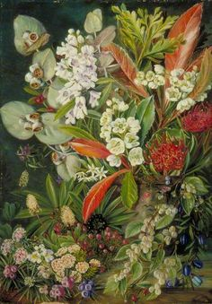Marianne North Gallery: Painting A Selection of Flowers from Mount Wellington, Tasmania Vintage Botanical Prints, Botanical Drawings, Botanical Flowers, Botanical Art, Beautiful Paintings Of Flowers, Flower Paintings, Moritz Von Schwind, Marianne North, Illustrations