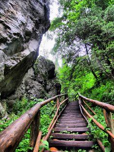 Tatra Mountains, Krakow, Climbers, Garden Bridge, Places Ive Been, German, Outdoor Structures, Landscape, Amazing