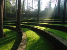 Scott Outdoor Amphitheatre, Swarthmore College, PA. Designed by Thomas Sears and completed in 1942.   2ft high retaining walls are made from layers of local schist slabs and the randomly spaced trees are Liriodendron tulipifera (Tulip Tree) and Quercus alba (White Oak).