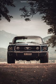 Blue Mustang Coupe V