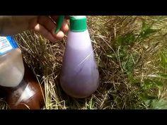 Soluție contra, țânțarilor,puricilor,căpușelor,muștelor și alte insecte(133). - YouTube Alter, Light Bulb, Water Bottle, Ocean, Netflix, Avocado, Agriculture, Diet, Insects