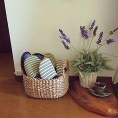miiko3さんの、玄関/入り口,かご収納,ニトリのカゴ,かご好き,しまむらのスリッパ,のお部屋写真