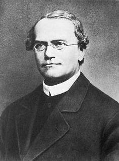 Gregor Johann Mendel, il padre della genetica e delle leggi sull'eredità Science News, Science And Technology, Plant Experiments, Charles Darwin, Biologist, Medical History, People Talk, Science And Nature, Writers