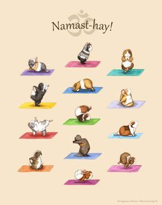 Can't even handle this. :: The Yoguineas Collection - Namast-hay! Art Print