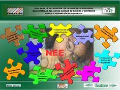 Guia de categorias diagnosticas y recopilatorio de recursos para alumnos ACNEAE o NEE