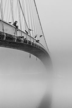 A bridge in the fog...